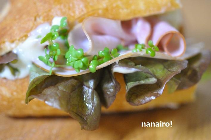 魚醤のおすすめの使い方、にんにくのスプレッド、サンドウィッチのソースにも◎。