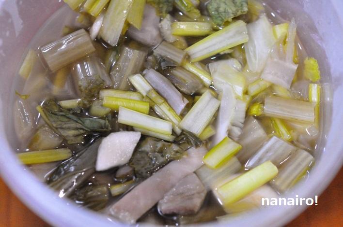 ヨーグルティアの容器にかぶの茎葉とすんきの種を入れます。